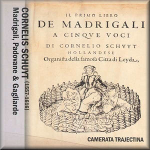 siege of madrigal download for free